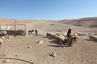 Alessandra Argiolas visita Cisgiordania_ Credit Oxfam_ Open Access -3-