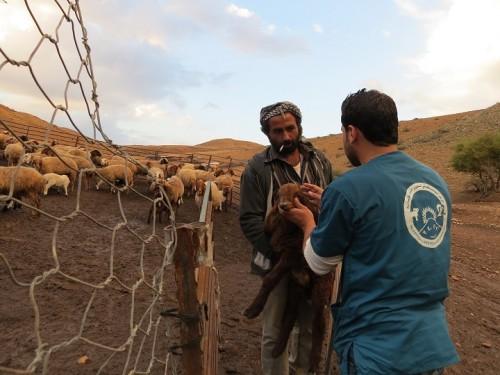Alessandra Argiolas visita Cisgiordania_ Credit Oxfam_ Open Access -5-