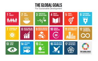 sdgs-obiettivi-sviluppo-sostenibile